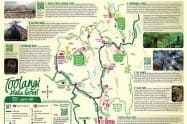 Toolangi State Forest
