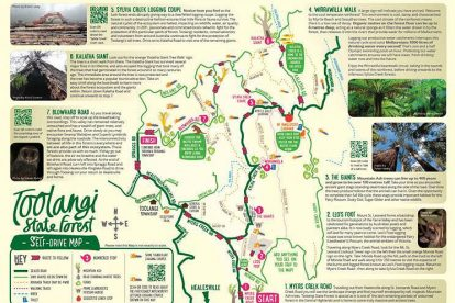 Toolangi State Forest Driving Map