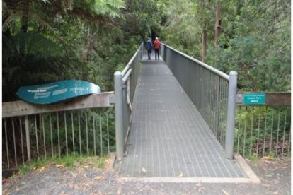 Mt Donna Buang Rainforest Gallery Entrance