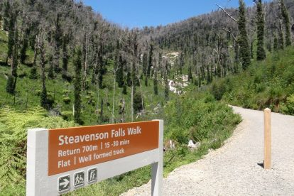 Steavensons Falls Walk