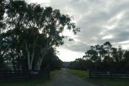Lilydale Airport