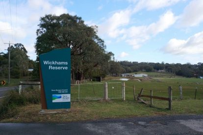 Launching Place Reserve - Wickhams Road Reserve 01