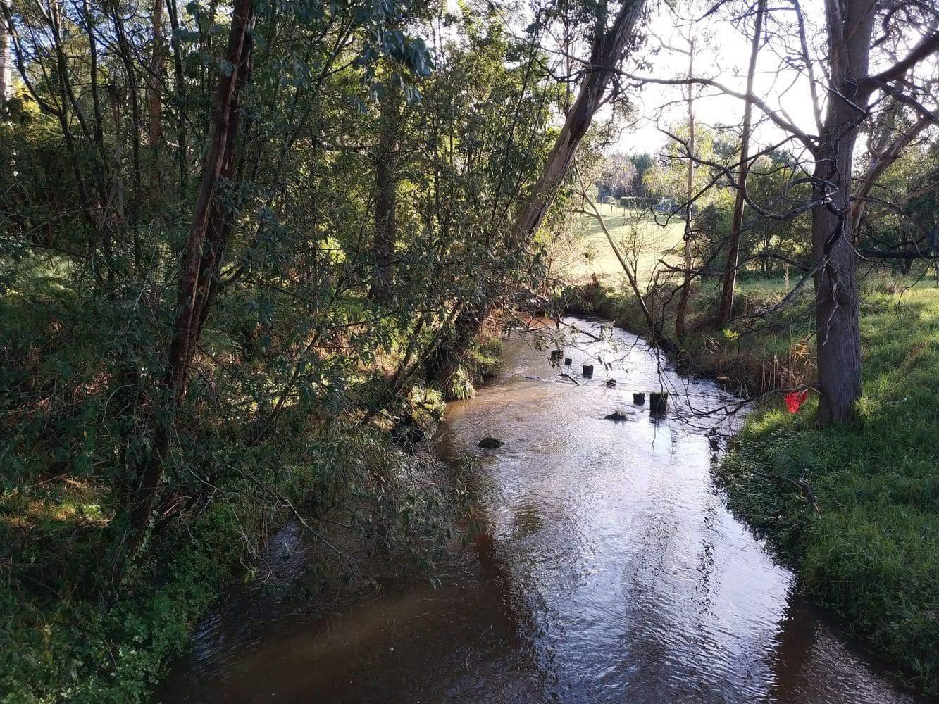 Little Yarra River 04