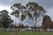 Seville Recreation Reserve