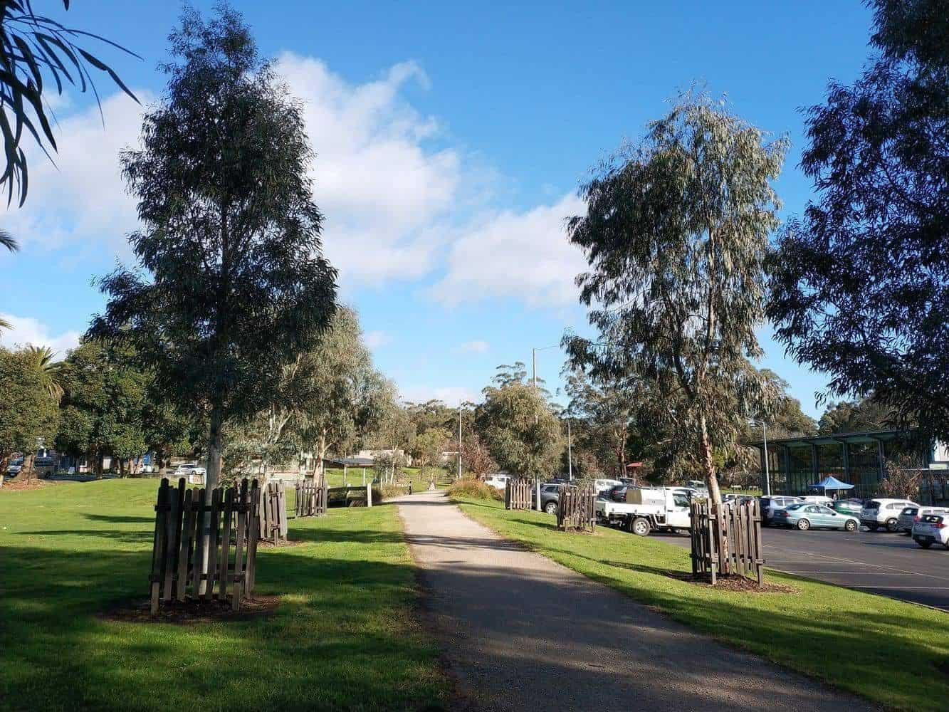 Yarra Junction Reserve 01