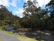 Yarra River Walk 01