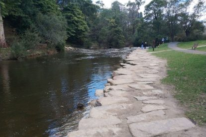 Yarra River Walk 10