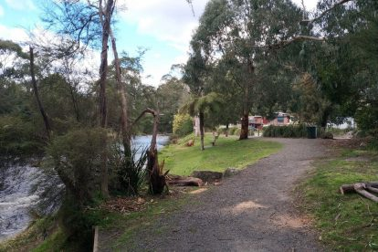 Yarra River Walk 11