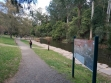 Yarra River Walk 12