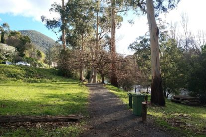 Yarra River Walk 14