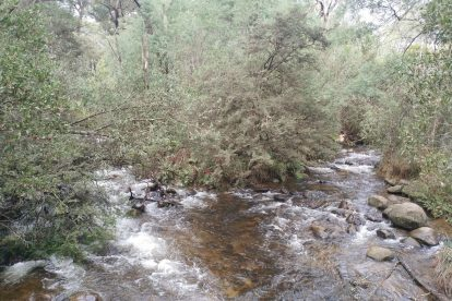 Cathedral Ranges State Park 16