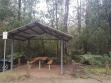 Toolangi State Forest 10