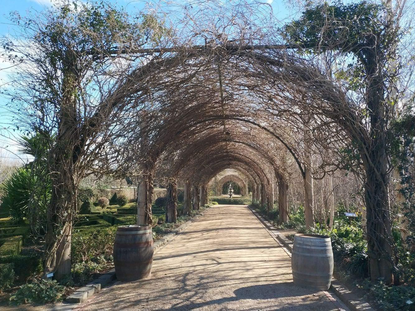 Alowyn Gardens 06