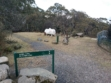 Mt Donna Buang 12