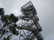 Mt Donna Buang 22