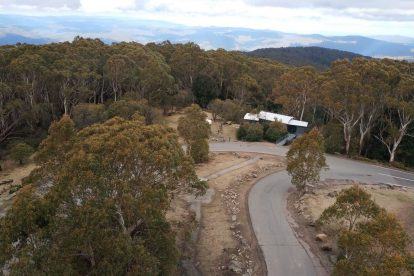 Mt Donna Buang 24
